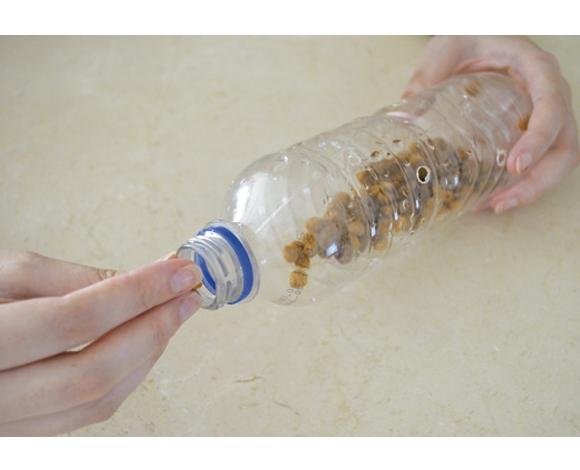 Coloque uma quantidade de ração ou petiscos dentro da garrafa
