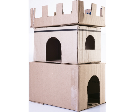 Aprenda A Fazer Um Castelo De Caixas Para O Seu Gato Clínica